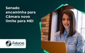 Senado Encaminha Para Câmara Novo Limite Para Mei Fiducia - FIDUCIA Contabilidade | Assessoria e Consultoria no Rio de Janeiro