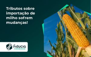 Tributos Sobre Importação De Milho Sofrem Mudanças! Fiducia - FIDUCIA Contabilidade | Assessoria e Consultoria no Rio de Janeiro